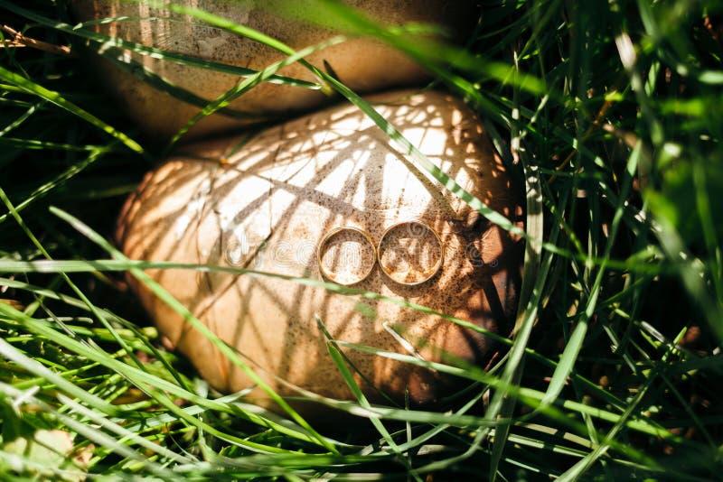 Aliança de casamento em cogumelos imagem de stock royalty free