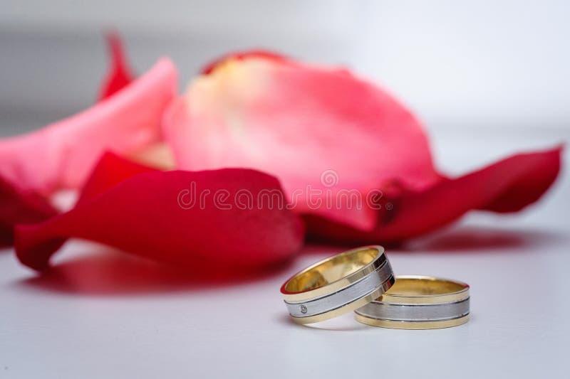 Alianças de casamento com fundo das pétalas cor-de-rosa imagem de stock royalty free