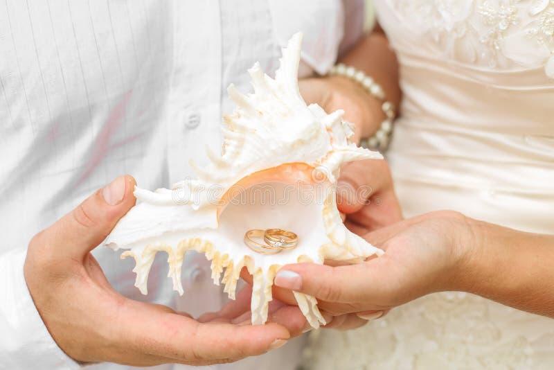 Alianças de casamento dentro de uma concha do mar imagem de stock royalty free