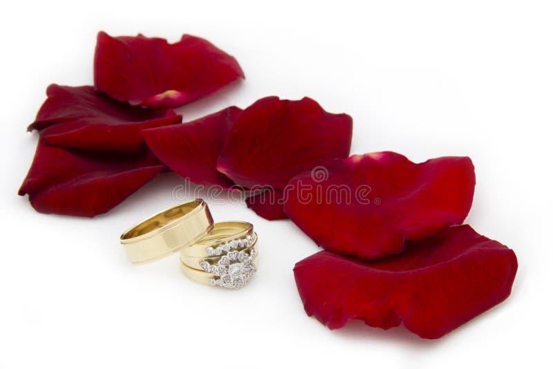 Alianças de casamento e Rose Petals fotografia de stock