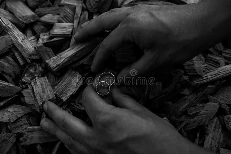 Alianças de casamento em costeletas de madeira com as mãos que guardam as imagens de stock royalty free