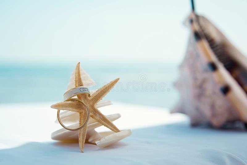 Alianças de casamento na estrela do mar na tabela Fundo tropical fotografia de stock royalty free