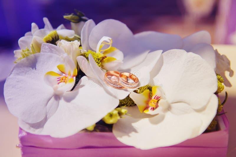 Alianças de casamento no ramalhete da orquídea imagem de stock