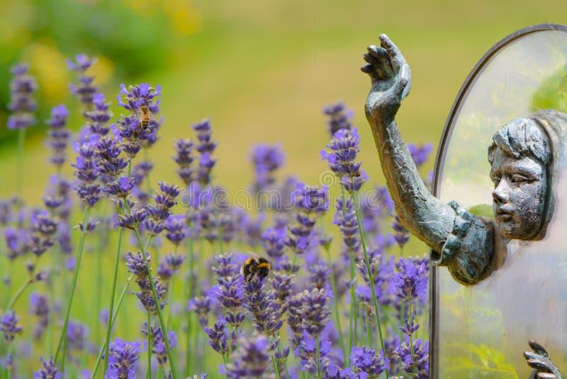 Alice através do espelho - a realidade despercebida imagens de stock royalty free