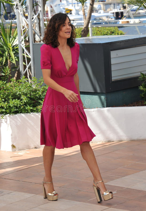 Alice Braga. CANNES, FRANCE - MAY 18, 2014: Alice Braga at the photocall for her movie El Ardor at the 67th Festival de Cannes stock images