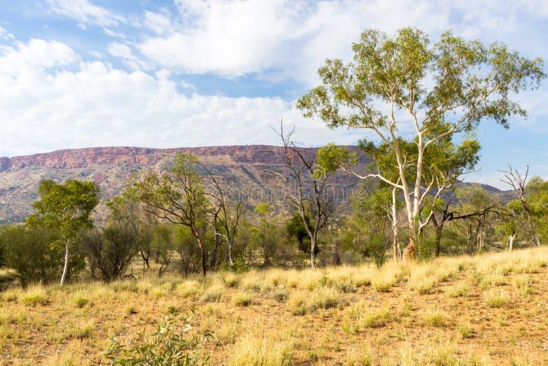 Alice Springs im Nordterritorium, Australien stockfotografie