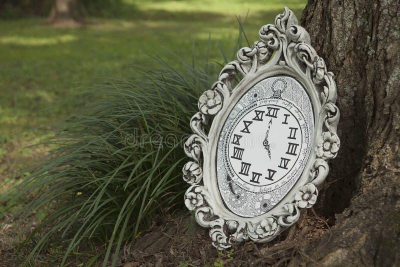 Alice w krainy cudów wycena obraz royalty free