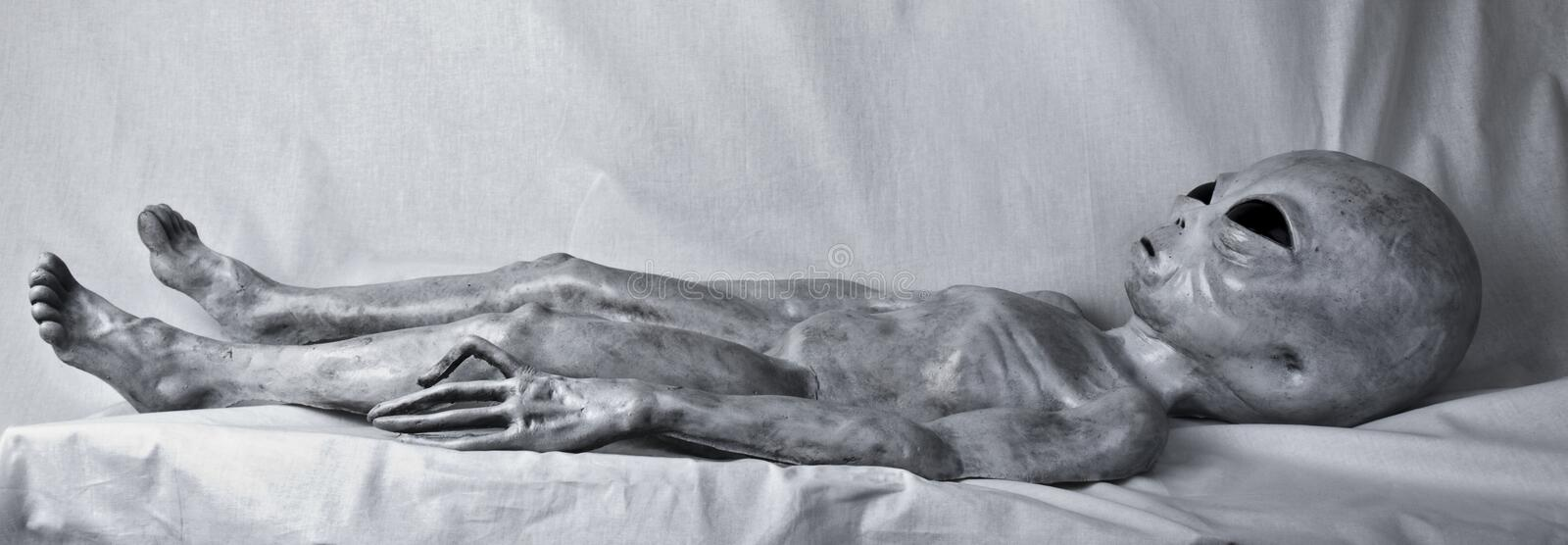 Alien Grey on Table. Grey alien laying on bed with grey background stock photos