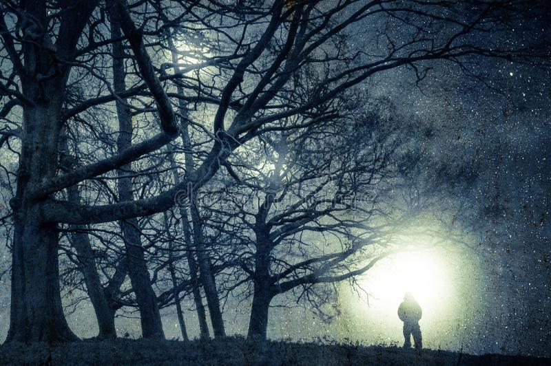 An alien night time concept edit. A spooky figure standing on the edge of woodland looking at lights in the sky on a stary night. stock photo