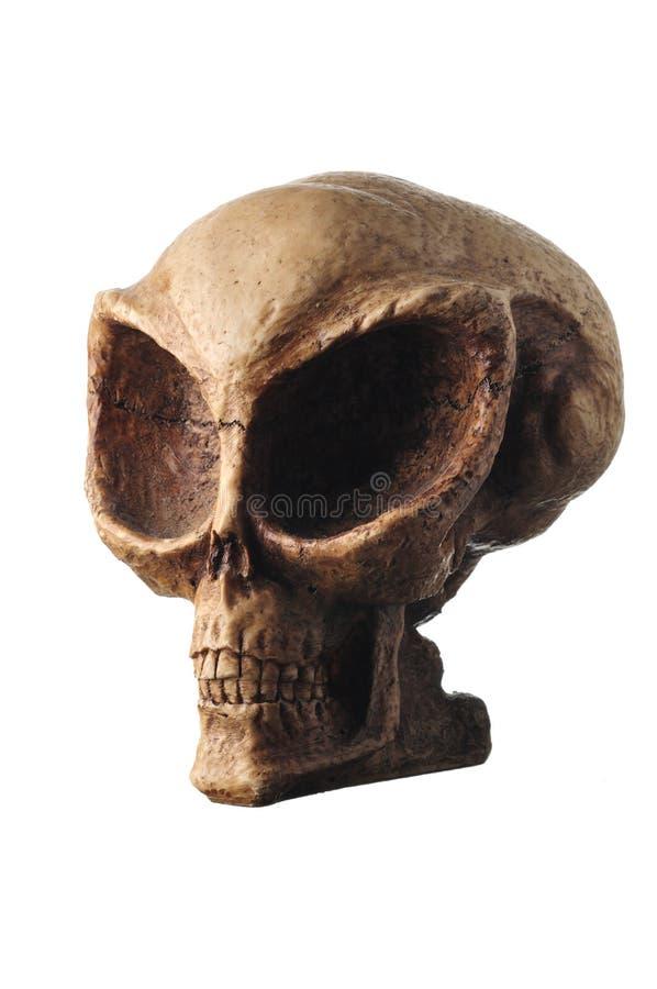 Download Alien Skull stock image. Image of extraterrestrial, creepy - 7126549