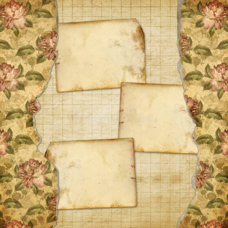 Alienujący album dla fotografii z malować różami ilustracji
