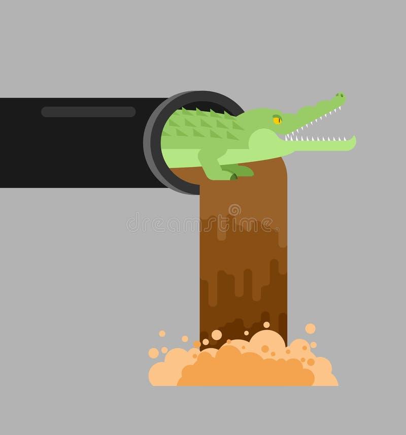 Aligator kanalizacja Krokodyl w kanale ściekowym drapieżnika zwierzę Miasto le ilustracji