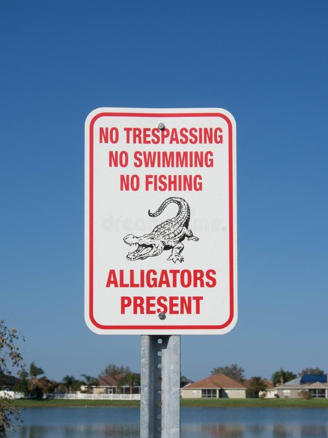 Aligator teraźniejszości znak obraz stock