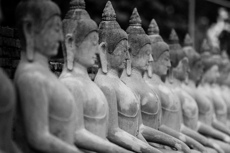 The Pagoda and Buddha Status at Wat Yai Chaimongkol, Ayutthaya,. Aligned Sitting Buddha Statues and Buddha Status at Wat Yai Chaimongkol, Ayutthaya, Thailand royalty free stock image