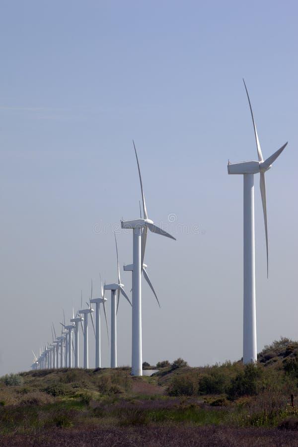 Aligned wind turbine stock photography