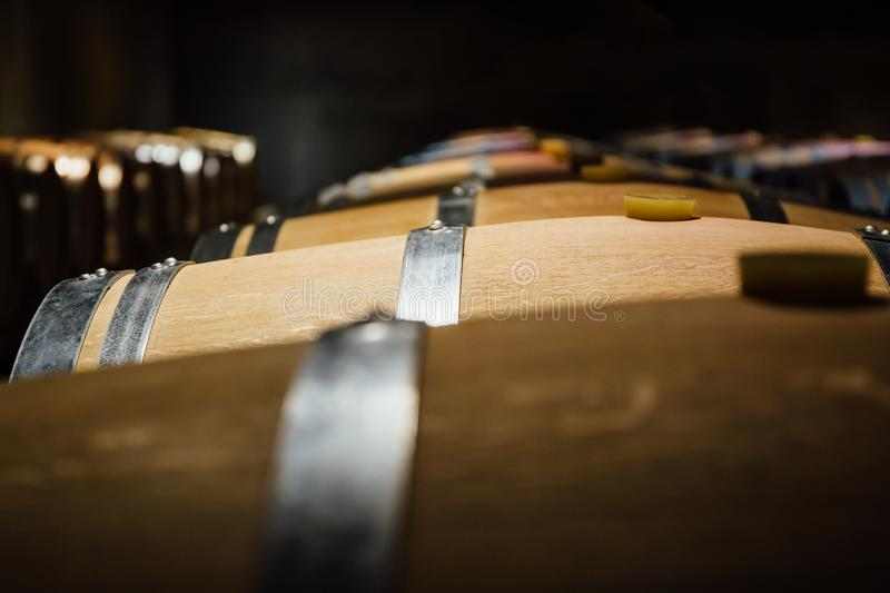 Aligned wine barrels in a cellar. With selective focus royalty free stock images