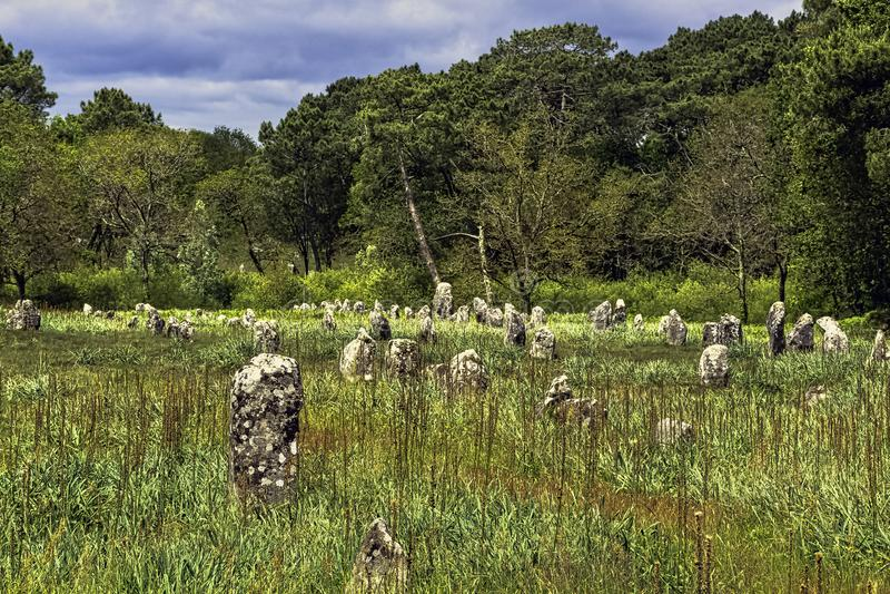 Alignements de Carnac - pedras de Carnac fotos de stock