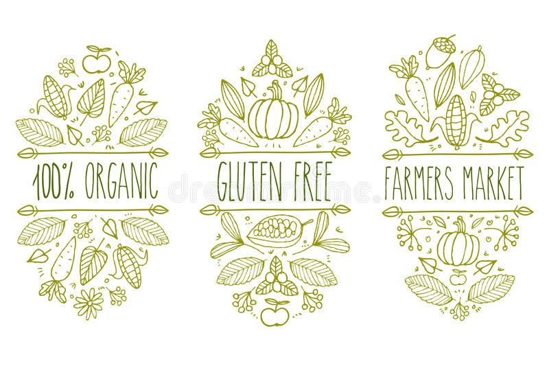 Aliment biologique, gluten gratuit, logo de menu du marché d'agriculteur Élément typographique de croquis tiré par la main de vec illustration stock