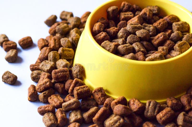 Aliment pour animaux familiers dans un masque jaune et autour de lui image stock