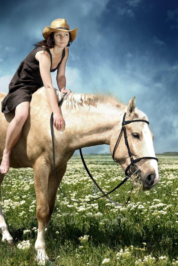 Alimentação do cavalo fotografia de stock
