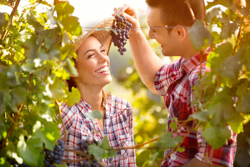 Alimentação do homem novo sua menina com uvas fotos de stock royalty free
