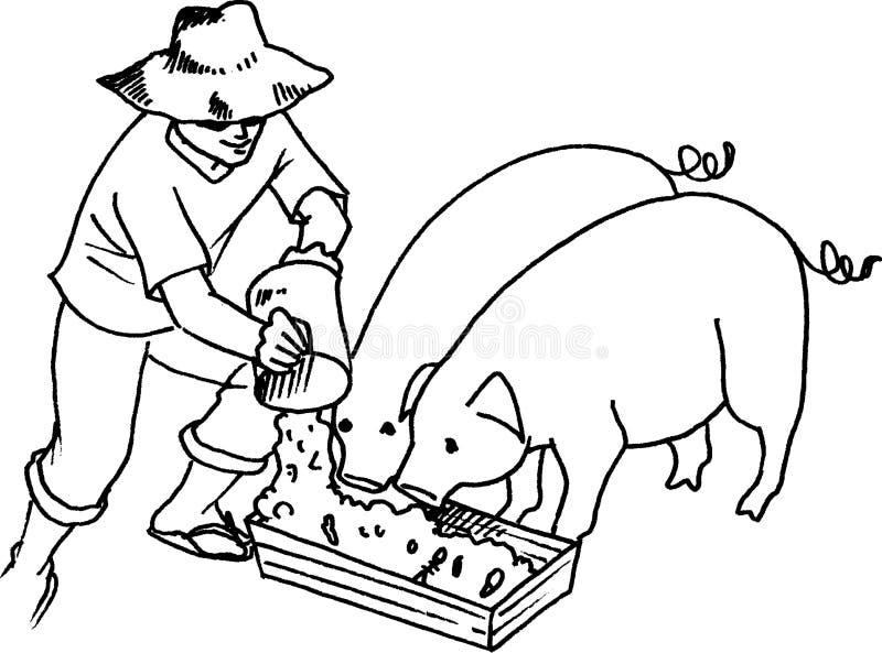 Download Alimentação do porco ilustração stock. Ilustração de fazendeiro - 10052774