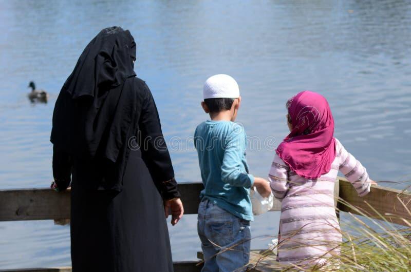 A alimentação muçulmana da família dos imigrantes ducks em uma lagoa fotos de stock