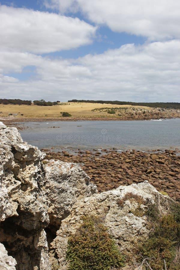 Alimenta la bahía, isla del canguro fotografía de archivo libre de regalías