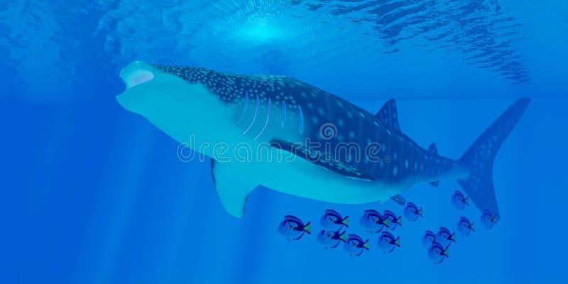 Alimentación del tiburón de ballena ilustración del vector