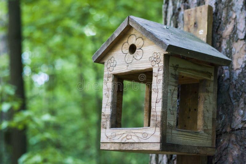 Alimentador, aviário em uma árvore nas madeiras ou parque fotos de stock royalty free