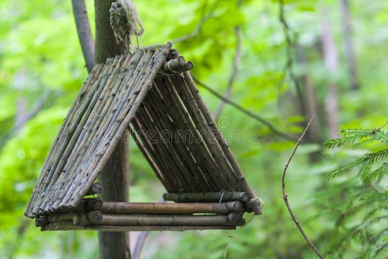 Alimentador, aviário em uma árvore nas madeiras ou parque foto de stock