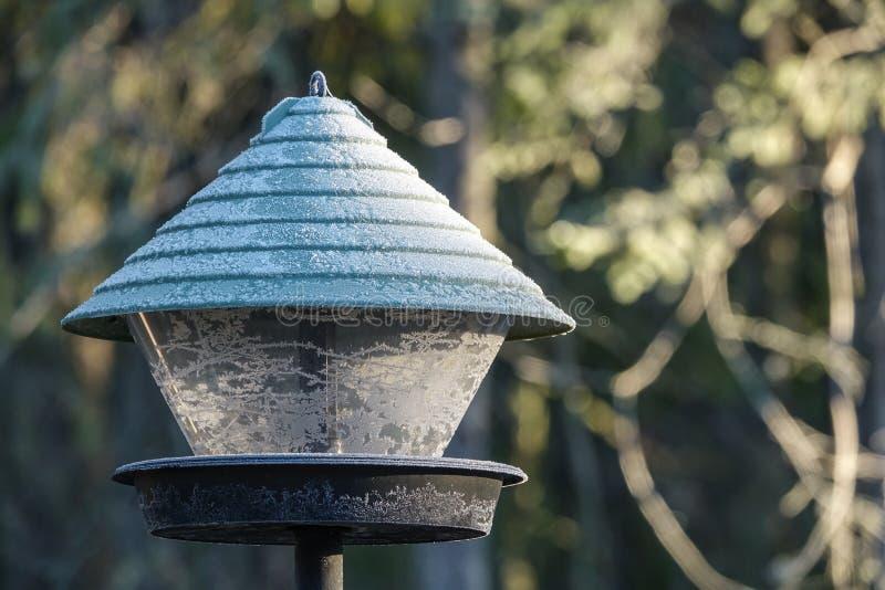Alimentador congelado del pájaro al aire libre imagen de archivo