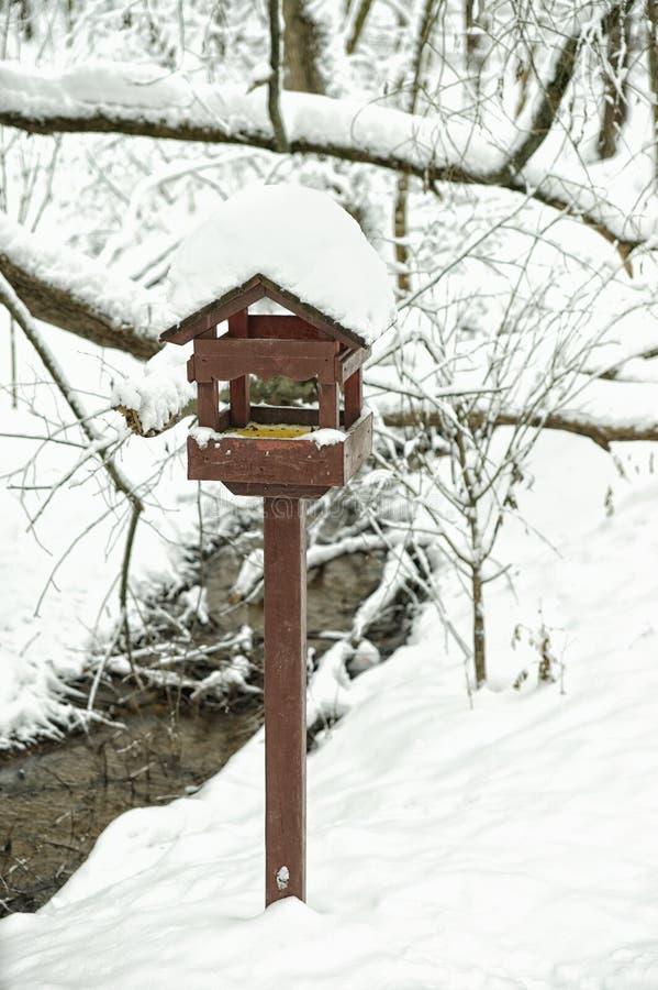 Alimentador de madeira do pássaro imagem de stock