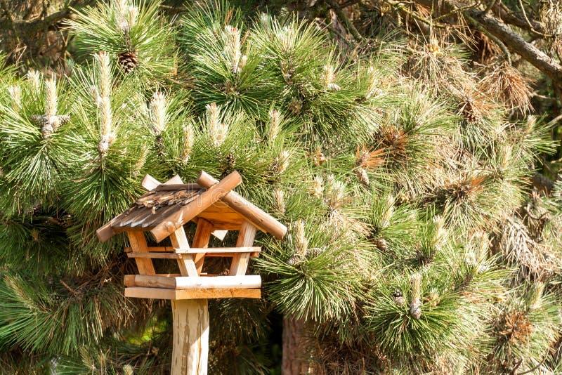 Alimentador de madeira do pássaro perto dos pássaros de alimentação da floresta Alimentadores da produção de casa imagens de stock royalty free