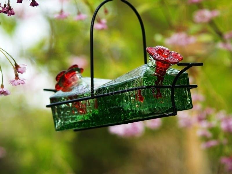 Alimentador del colibrí imágenes de archivo libres de regalías