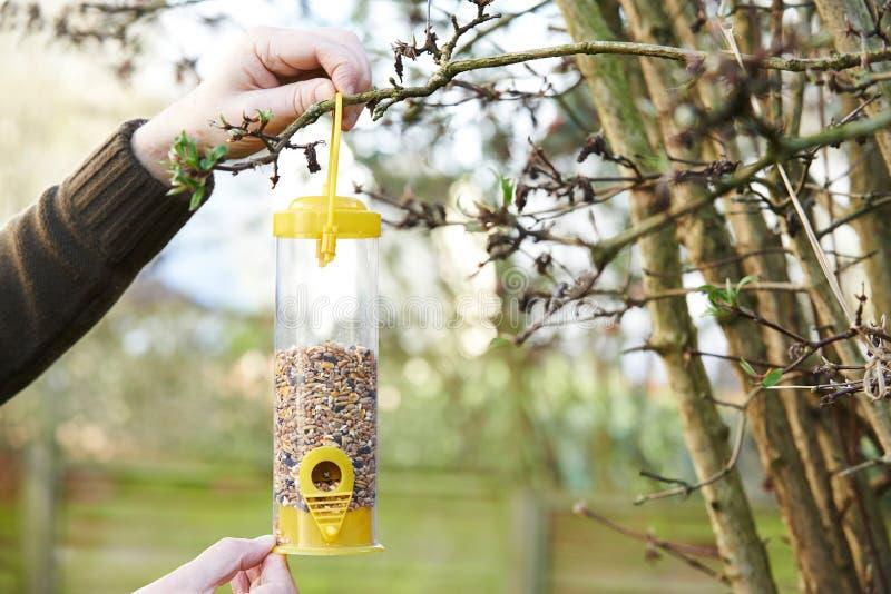 Alimentador del pájaro de la ejecución del hombre en jardín foto de archivo libre de regalías