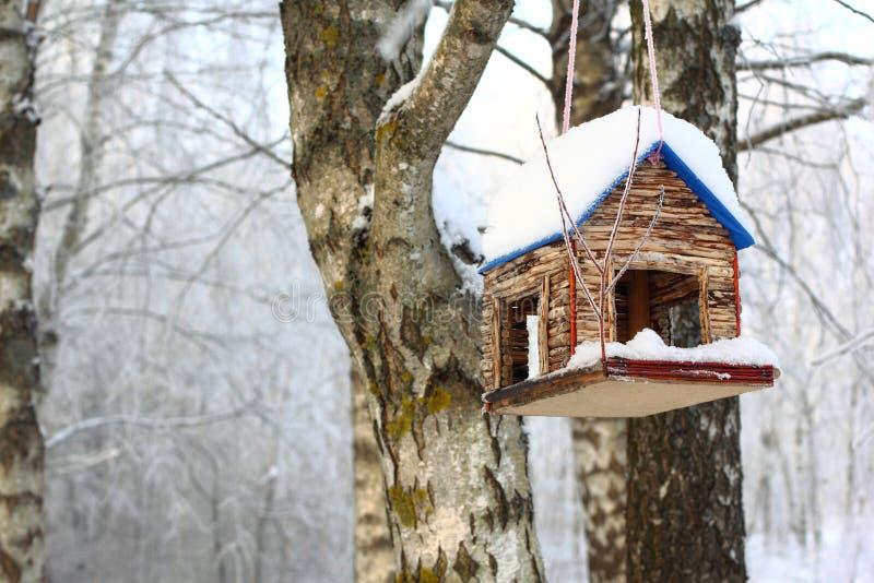 Alimentador del pájaro en bosque del invierno fotos de archivo