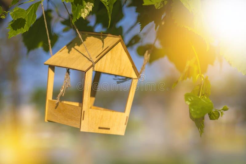 Alimentador del pájaro en el árbol entre las hojas verdes, fondo hermoso con luz del sol Copyspace imagen de archivo