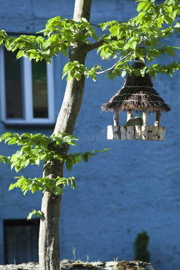 Alimentador del pájaro en la oscuridad fotografía de archivo
