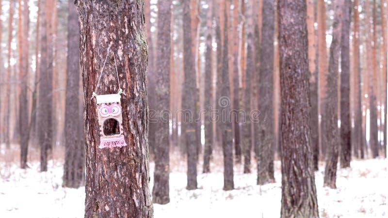 Alimentador emocional en el árbol imagenes de archivo