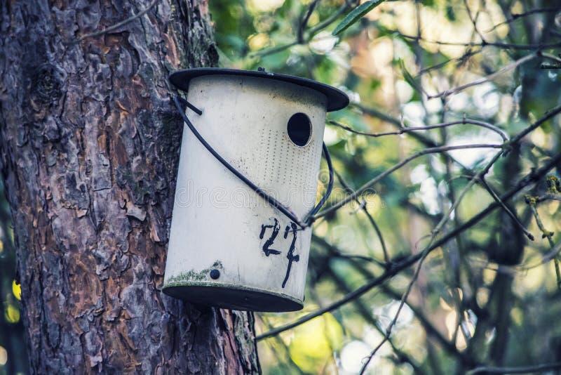 Alimentador para los pájaros fotografía de archivo libre de regalías