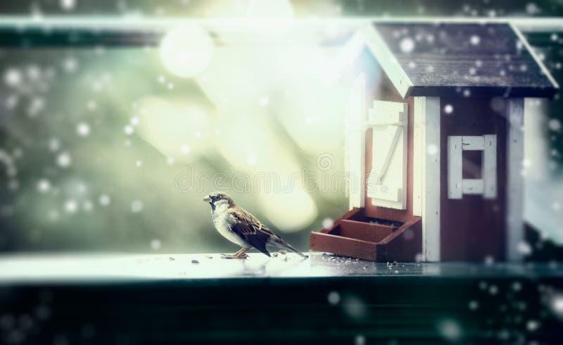 Alimentadores do pássaro do inverno sob a forma da casa e do pardal no balcão, queda de neve imagem de stock royalty free