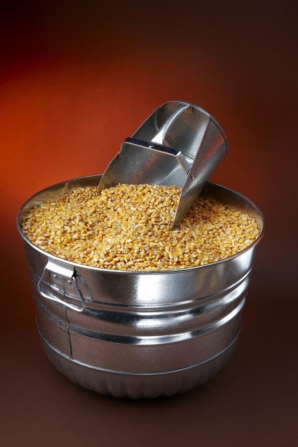 Alimentation de maïs photos libres de droits