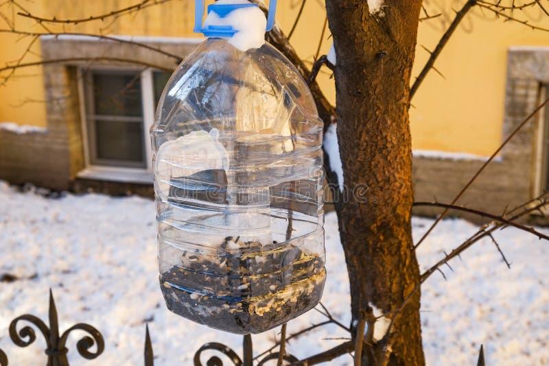 Alimentatore casalingo dell'uccello fotografie stock