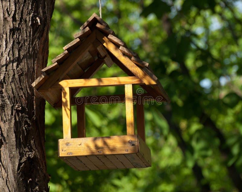 Alimentatore dell'uccello che appende sull'albero immagine stock