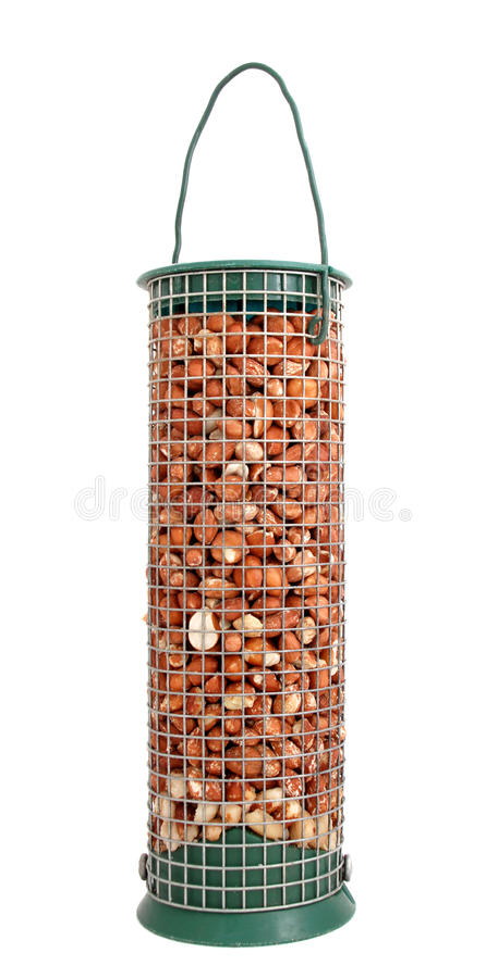 Alimentatore dell'uccello in pieno delle arachidi fotografie stock libere da diritti