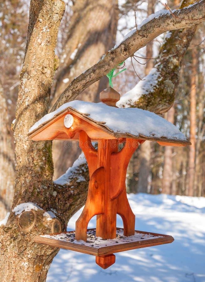 Alimentatore di legno dell'uccello fotografie stock