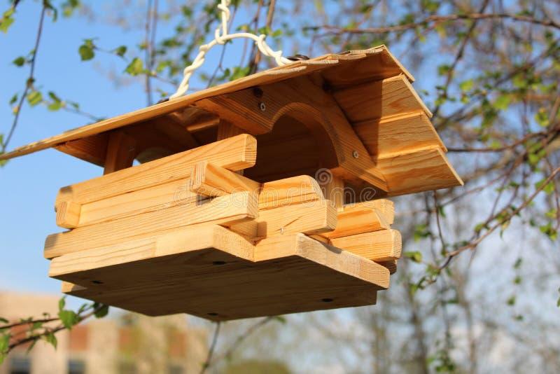 Alimentatore di legno dell'uccello su un ramo di albero fotografie stock libere da diritti