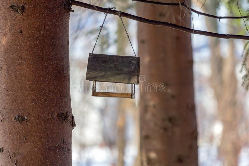 Alimentatore di legno vuoto dell'uccello fotografia stock libera da diritti