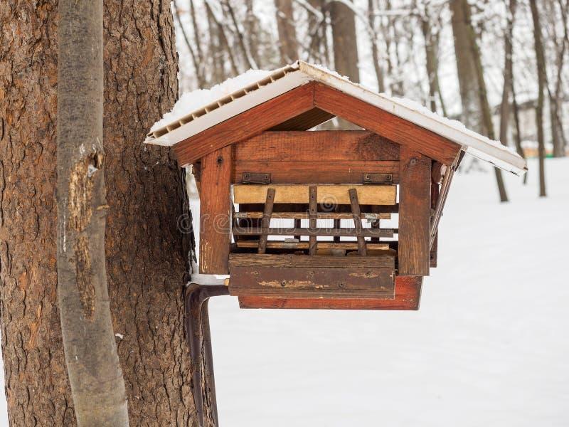 Alimentatore per gli scoiattoli nel parco con la protezione degli uccelli fotografia stock